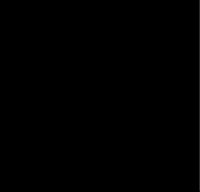 ChicaBonita-black logo